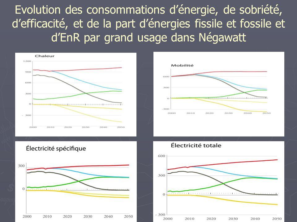 Evolution des consommations d'énergie, de sobriété, d'efficacité, et de la part d'énergies fissile et fossile et d'EnR par grand usage dans Négawatt