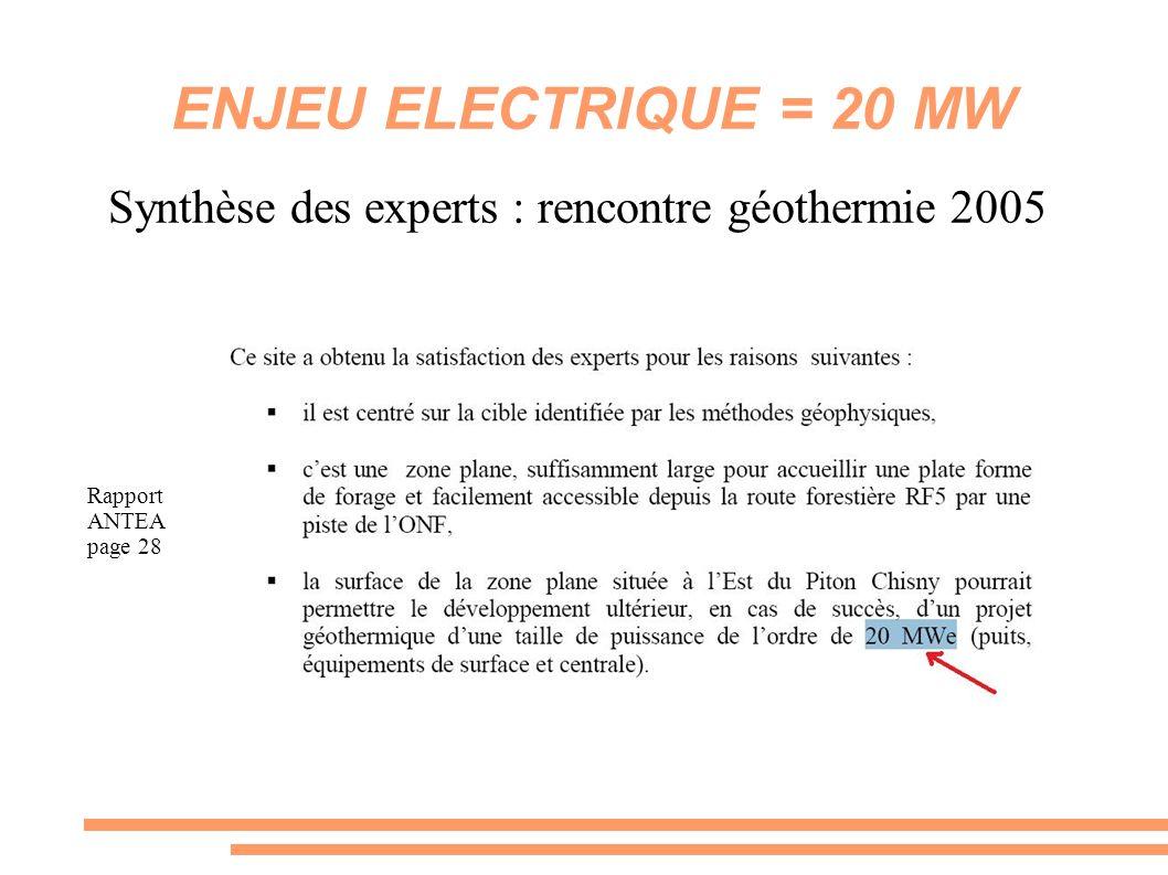 Synthèse des experts : rencontre géothermie 2005