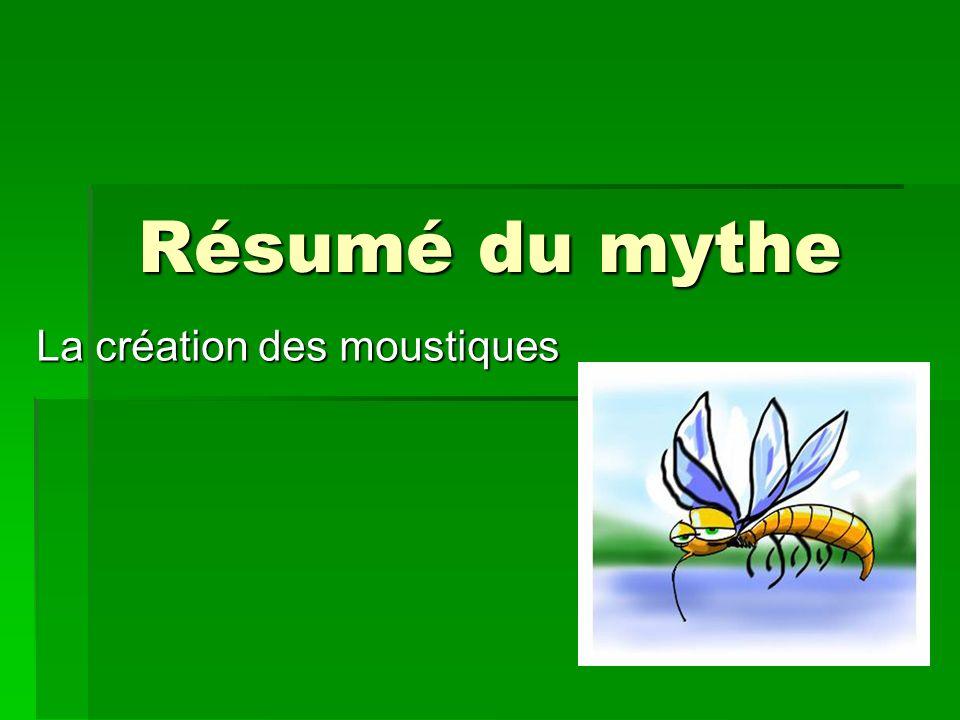 La création des moustiques