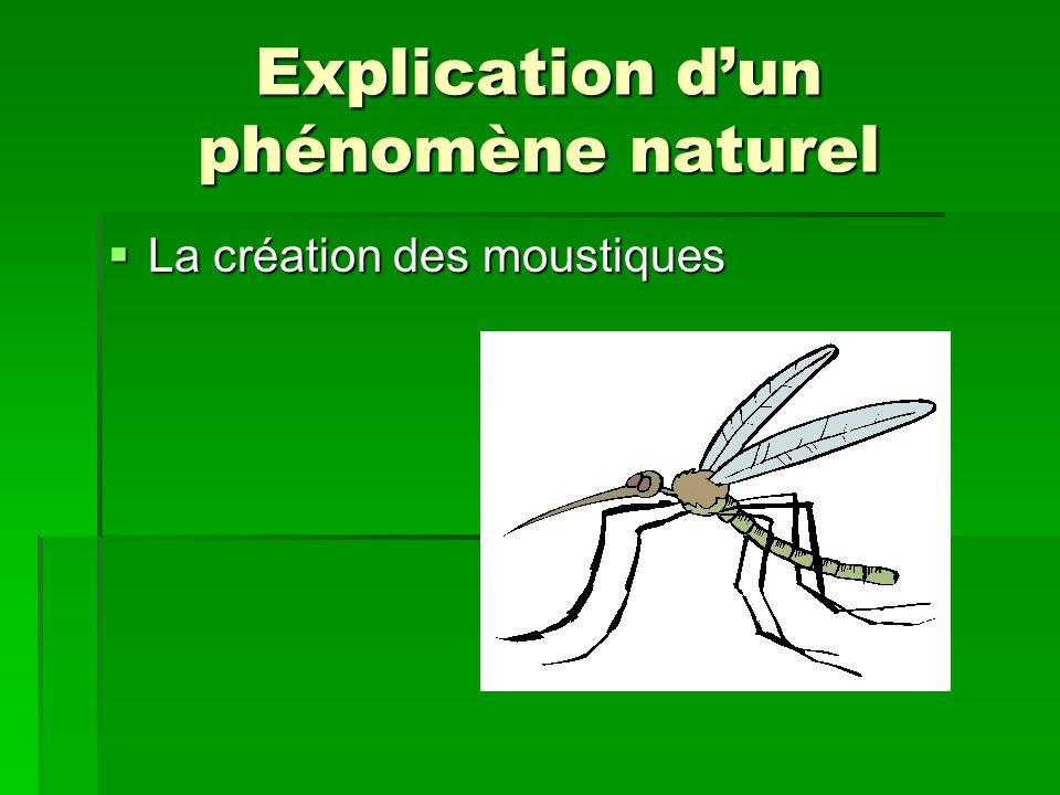 Explication d'un phénomène naturel