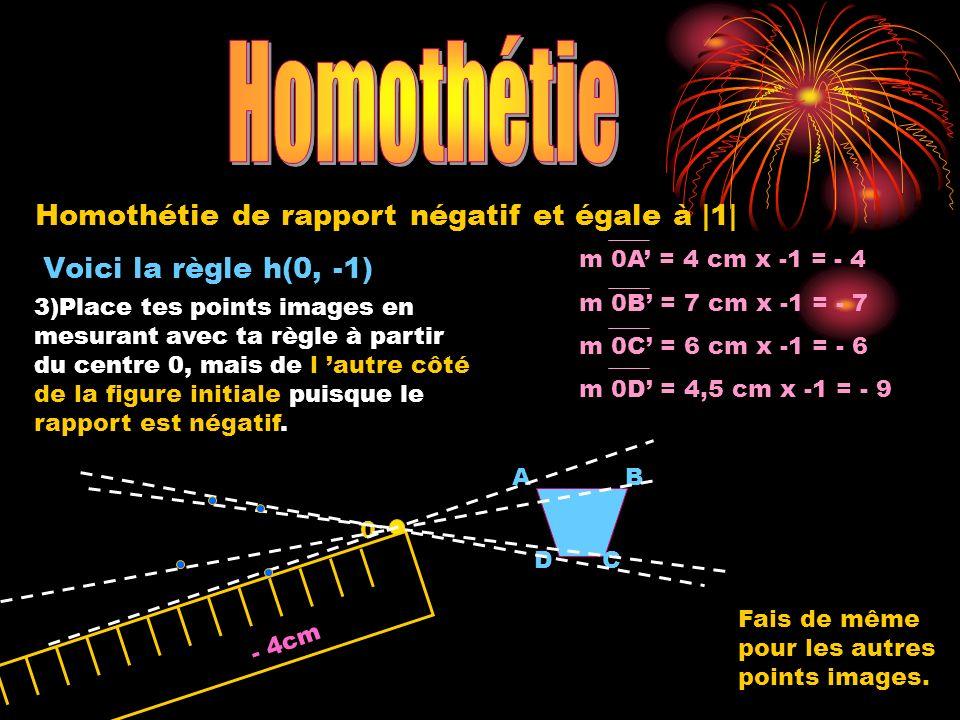 Homothétie Homothétie de rapport négatif et égale à |1|