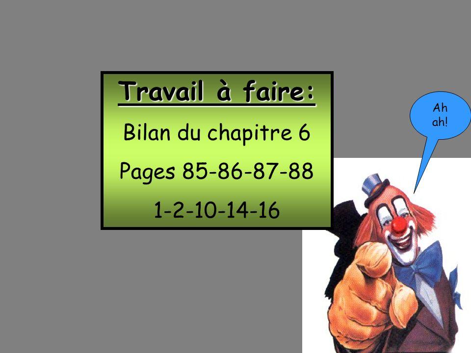 Fin! Travail à faire: Bilan du chapitre 6 Pages 85-86-87-88