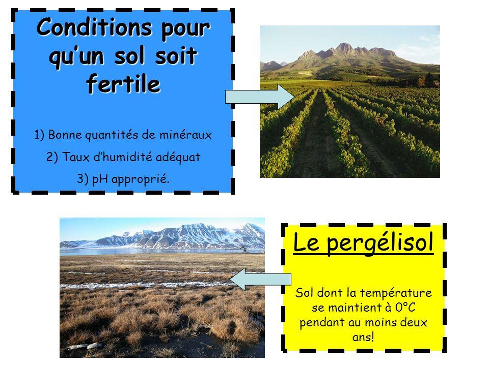 Conditions pour qu'un sol soit fertile