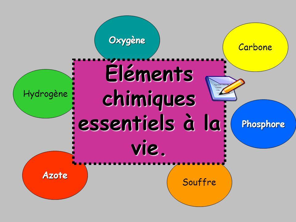 Éléments chimiques essentiels à la vie.