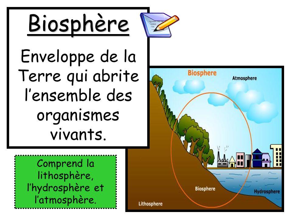 Biosphère Enveloppe de la Terre qui abrite l'ensemble des organismes vivants.