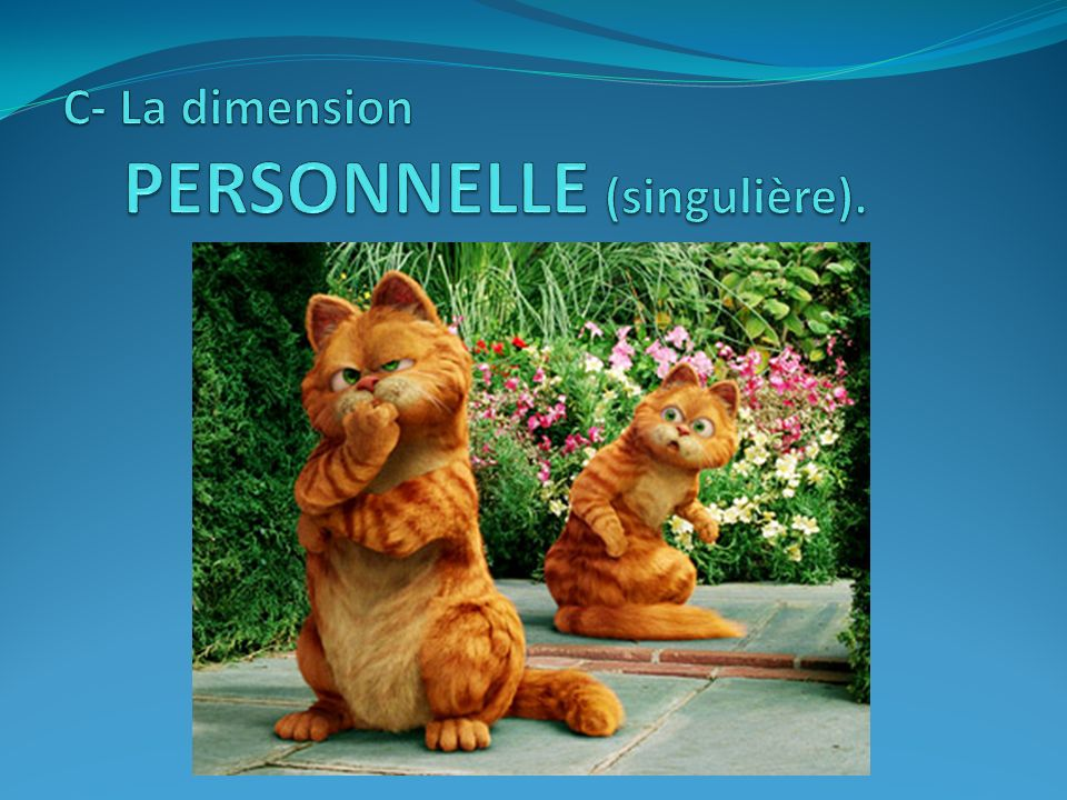 C- La dimension PERSONNELLE (singulière).
