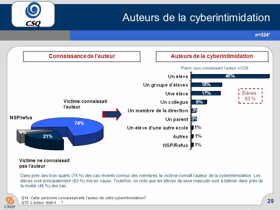 Auteurs de la cyberintimidation