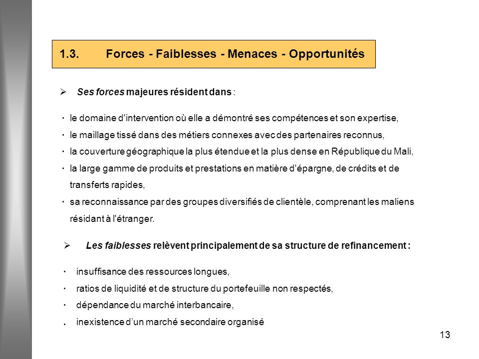 1.3. Forces - Faiblesses - Menaces - Opportunités