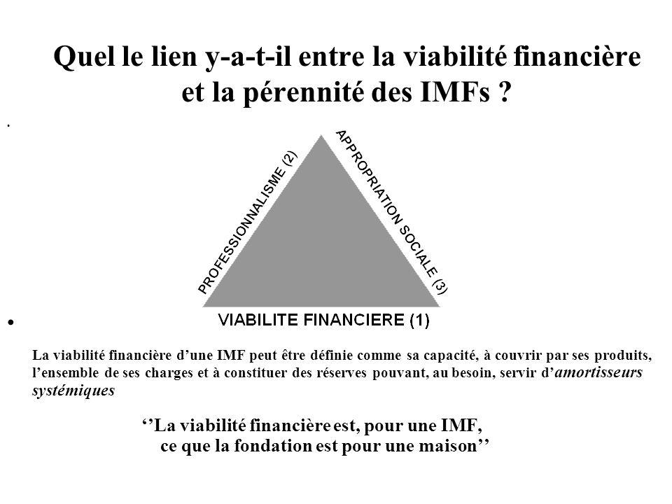 Quel le lien y-a-t-il entre la viabilité financière et la pérennité des IMFs