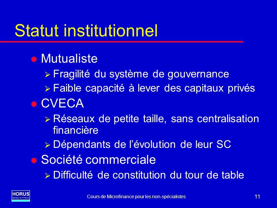 Statut institutionnel