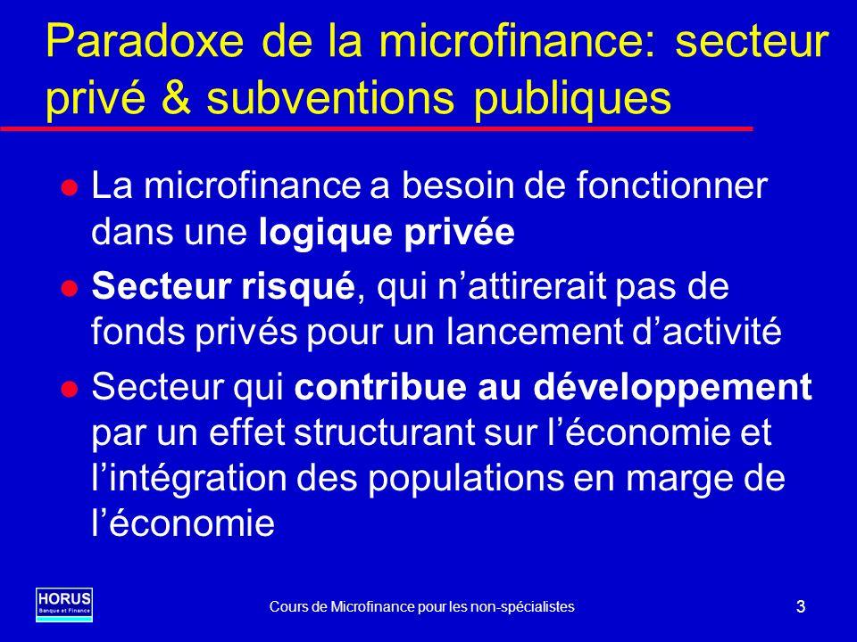 Paradoxe de la microfinance: secteur privé & subventions publiques