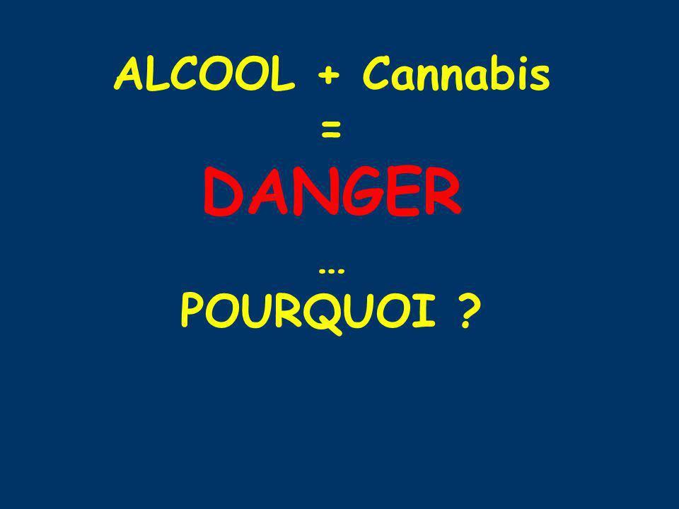 ALCOOL + Cannabis = DANGER … POURQUOI