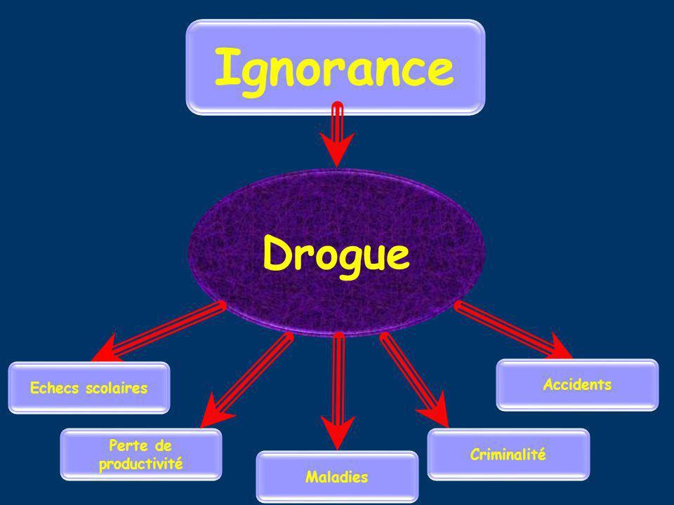 Ignorance Drogue Accidents Echecs scolaires Perte de productivité