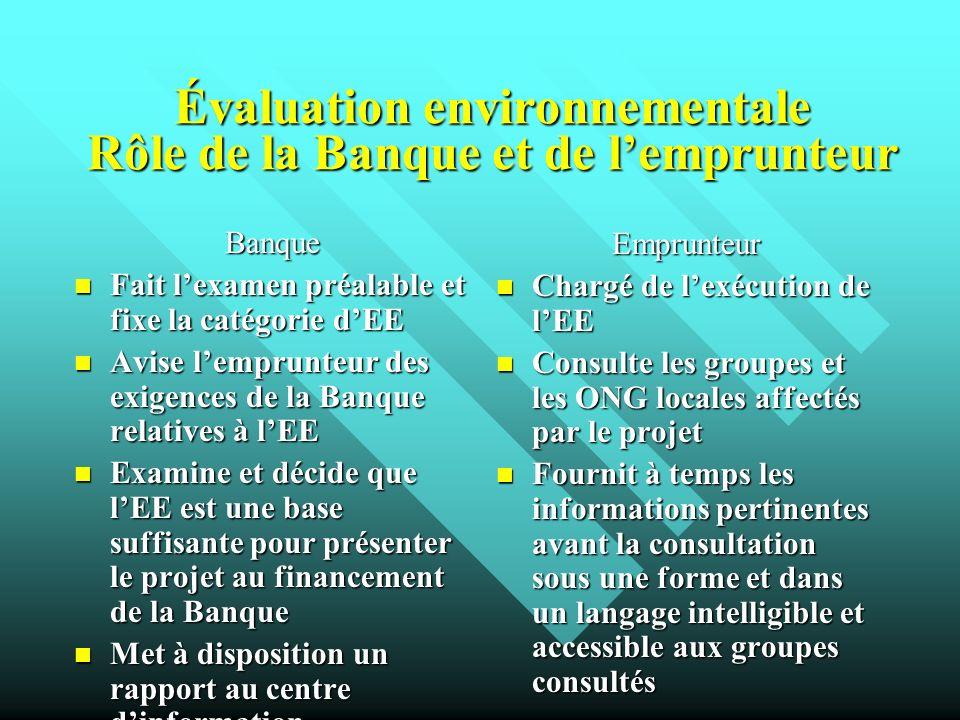 Évaluation environnementale Rôle de la Banque et de l'emprunteur