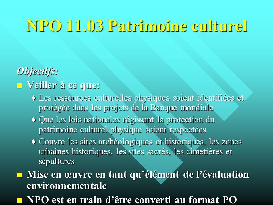 NPO 11.03 Patrimoine culturel