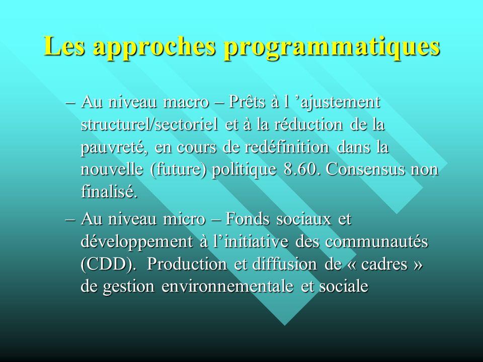 Les approches programmatiques