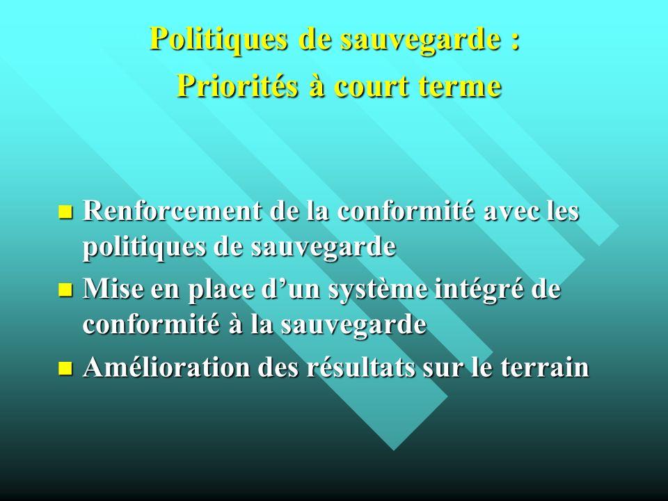 Politiques de sauvegarde : Priorités à court terme
