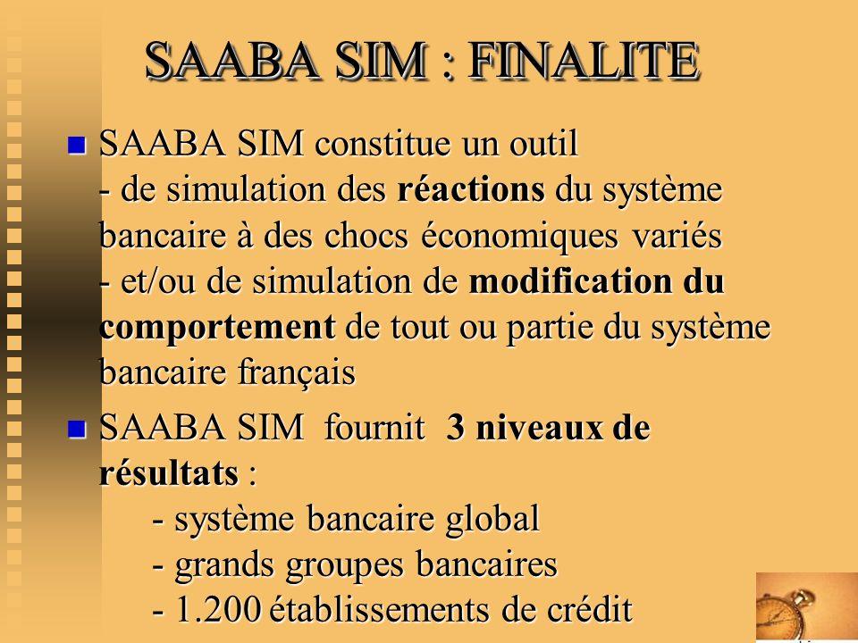 SAABA SIM : FINALITE