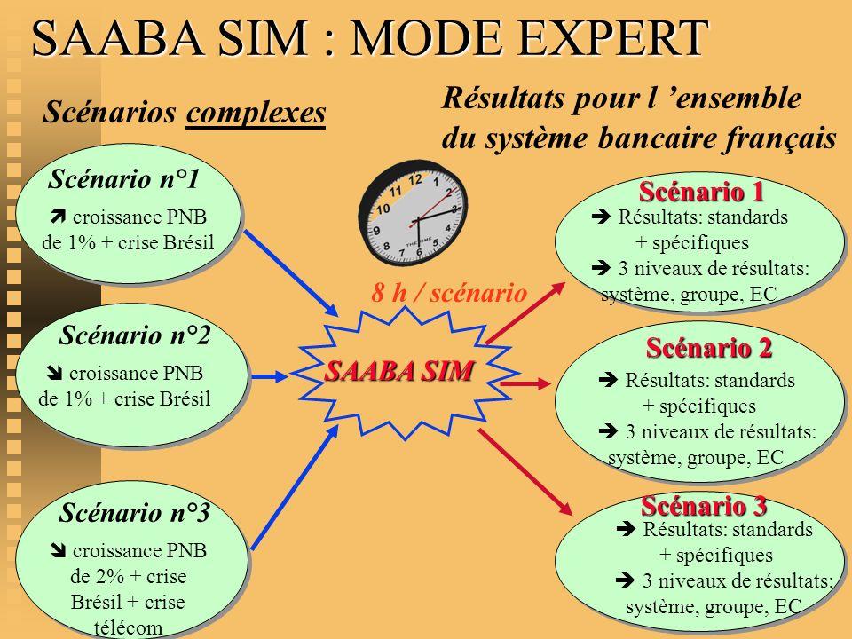 SAABA SIM : MODE EXPERT Résultats pour l 'ensemble du système bancaire français. Scénarios complexes.