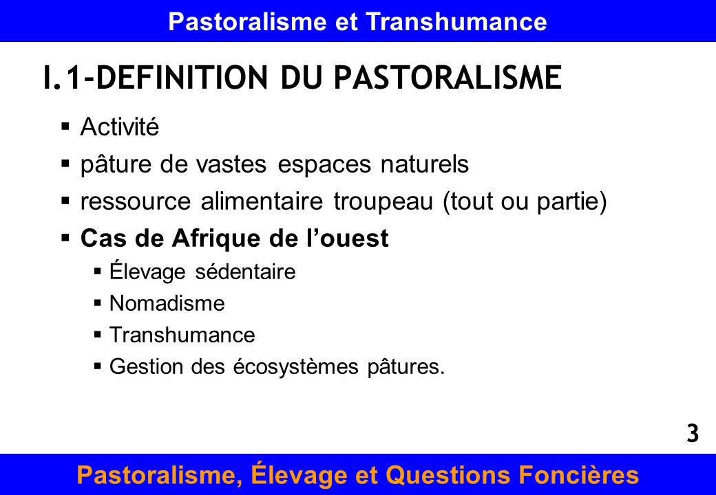 I.1-DEFINITION DU PASTORALISME