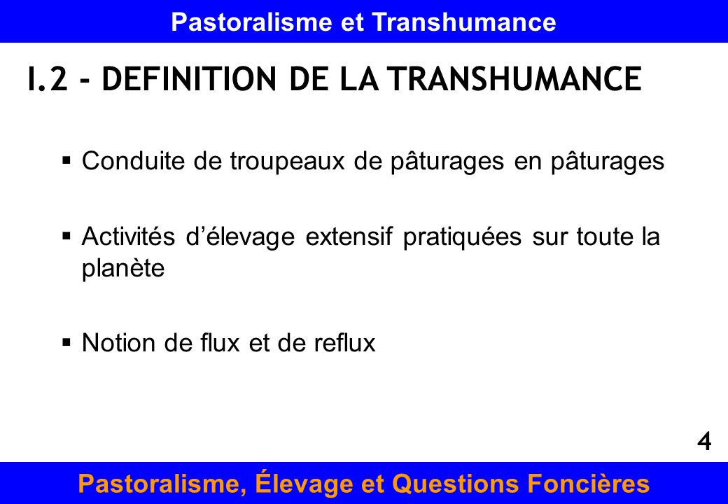I.2 - DEFINITION DE LA TRANSHUMANCE