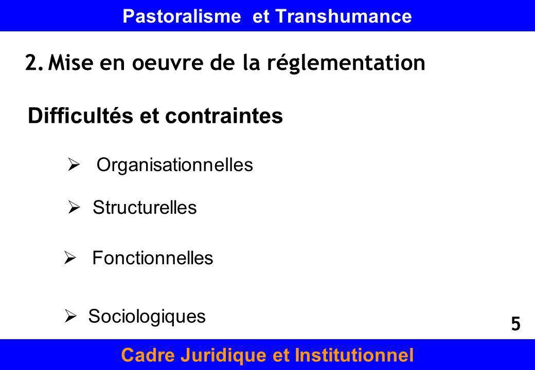 Pastoralisme et Transhumance