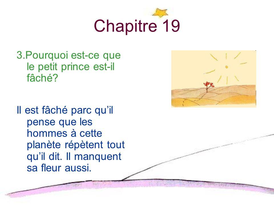 Chapitre 19 3.Pourquoi est-ce que le petit prince est-il fâché