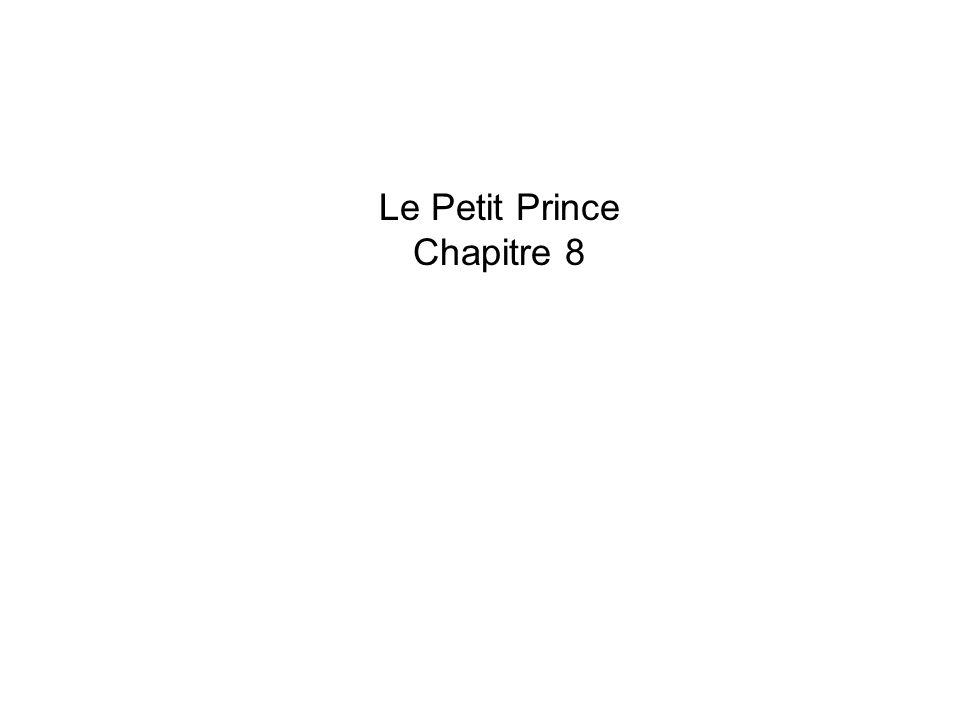 Le Petit Prince Chapitre 8