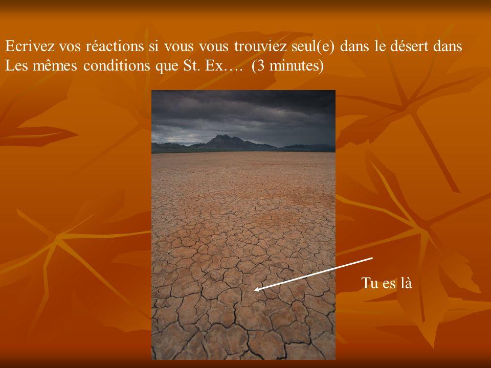 Ecrivez vos réactions si vous vous trouviez seul(e) dans le désert dans