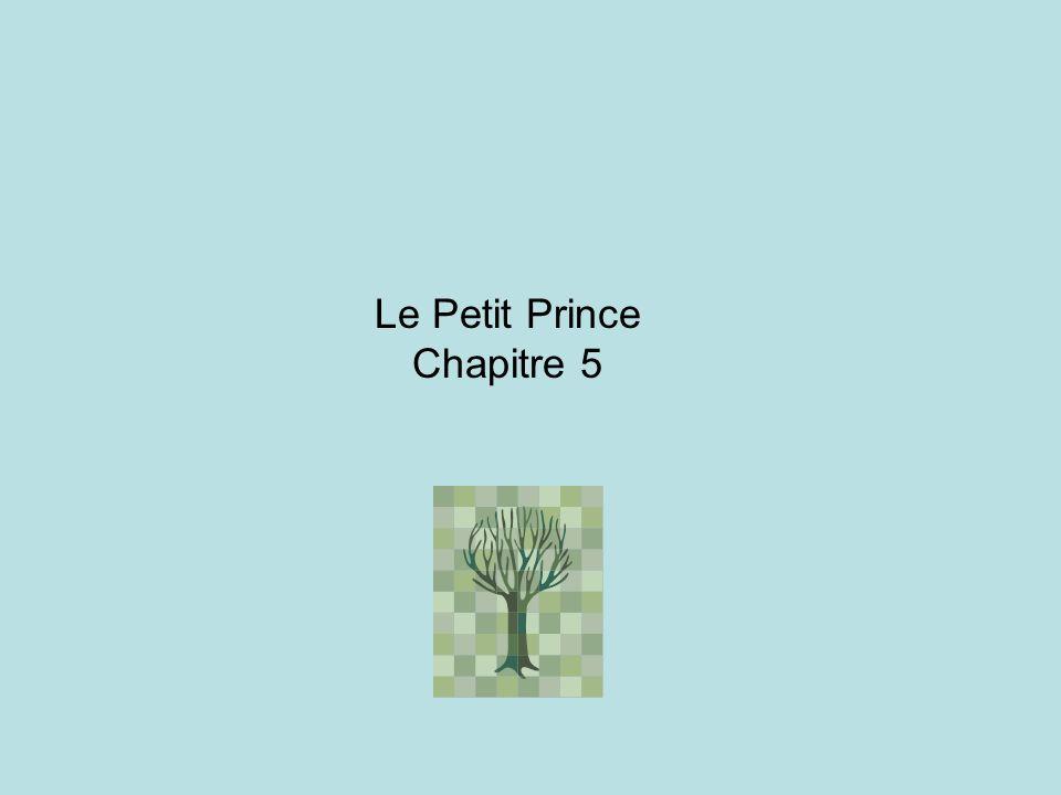Le Petit Prince Chapitre 5