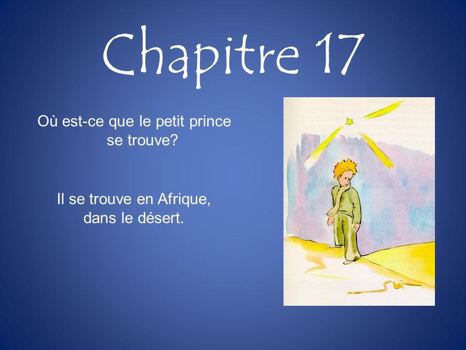 Chapitre 17 Où est-ce que le petit prince se trouve