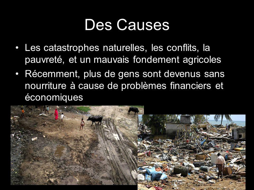 Des Causes Les catastrophes naturelles, les conflits, la pauvreté, et un mauvais fondement agricoles.