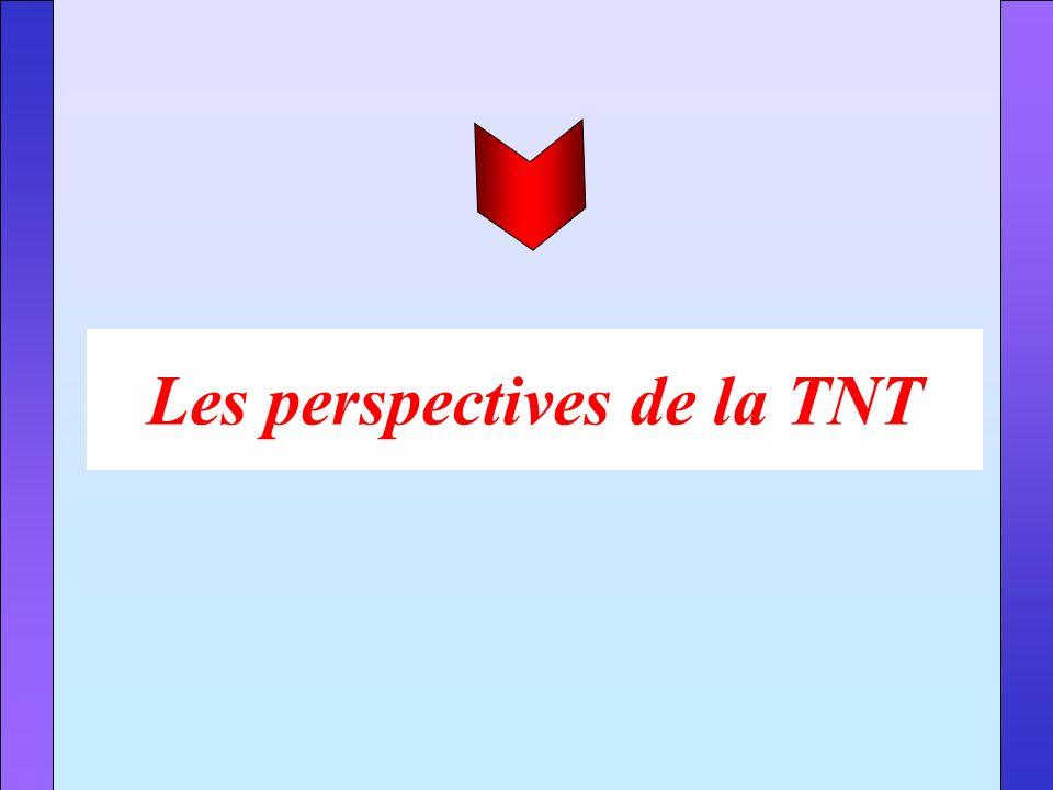Les perspectives de la TNT