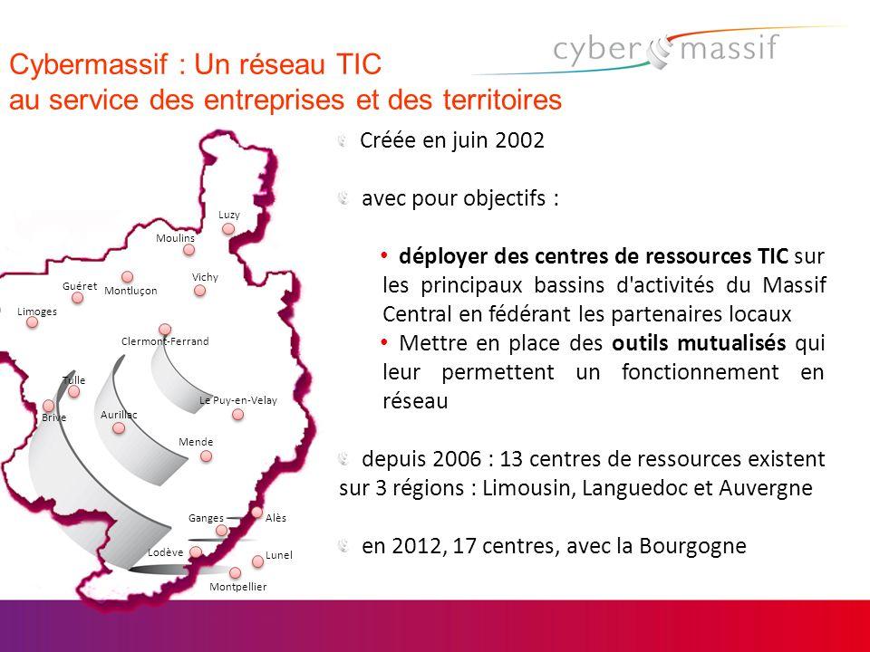 Cybermassif : Un réseau TIC