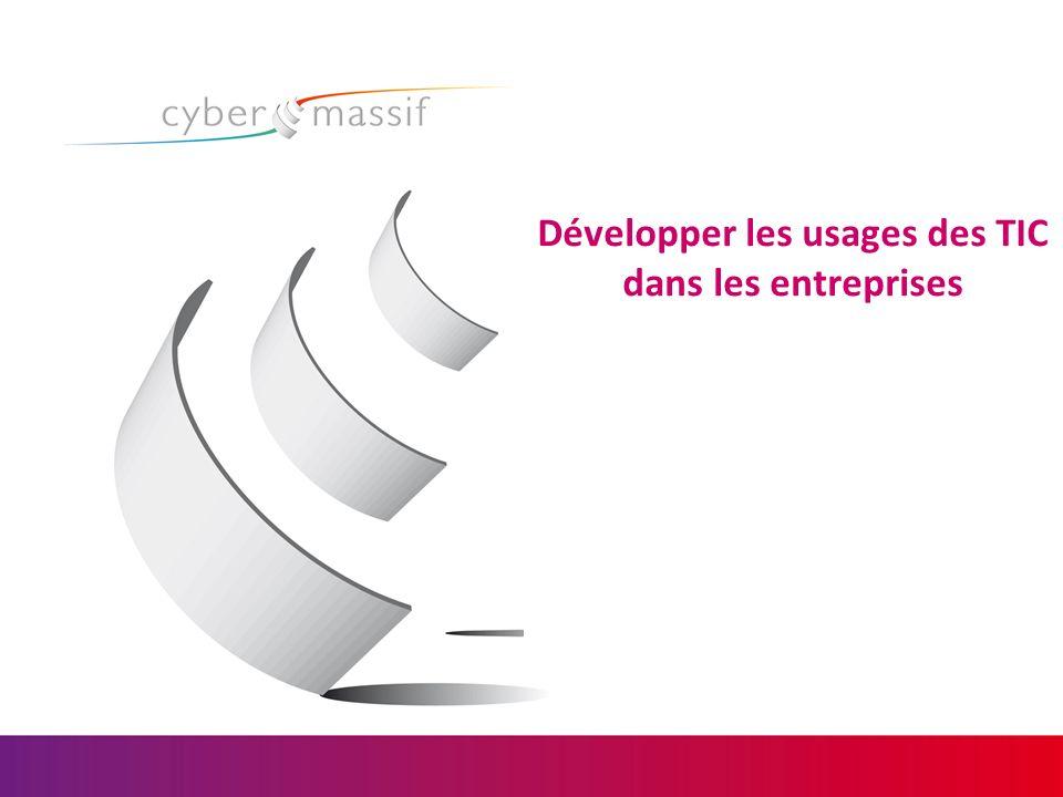 Développer les usages des TIC dans les entreprises