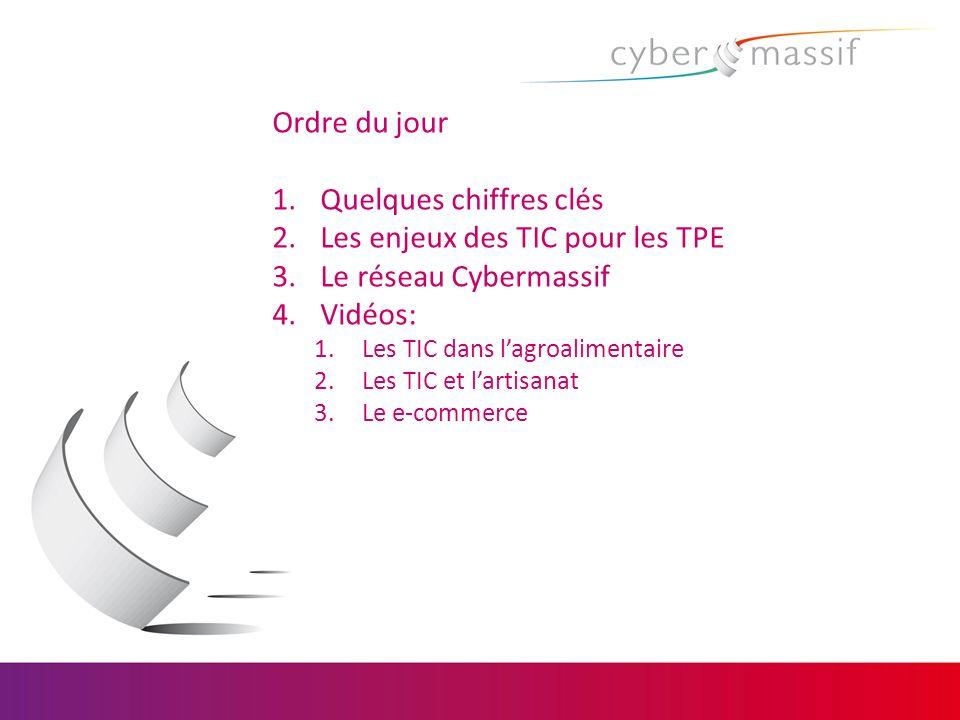 Quelques chiffres clés Les enjeux des TIC pour les TPE