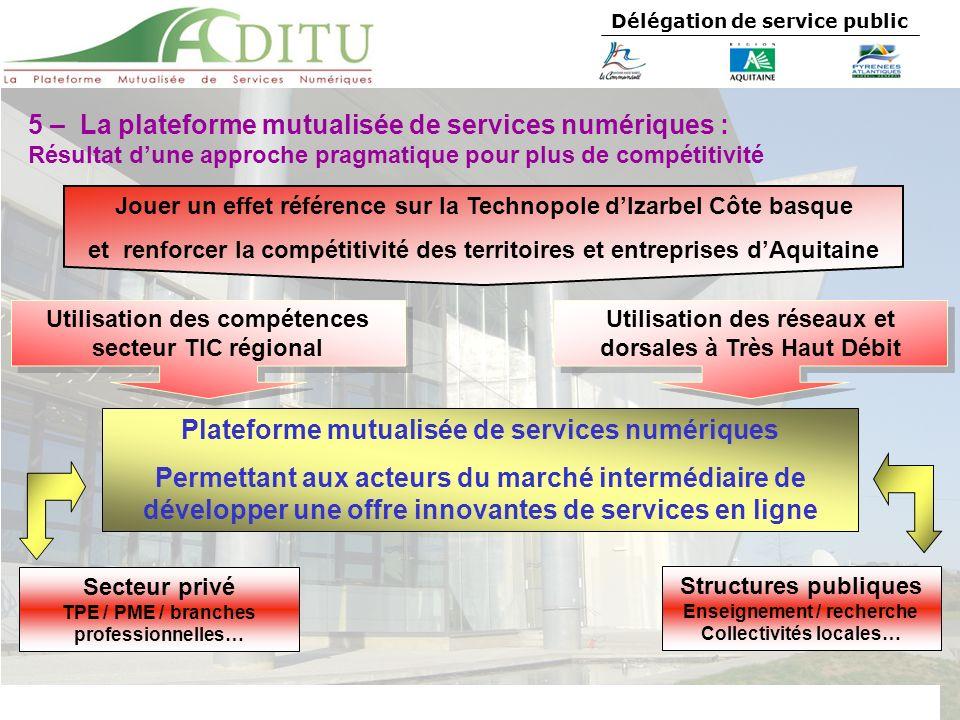 5 – La plateforme mutualisée de services numériques :
