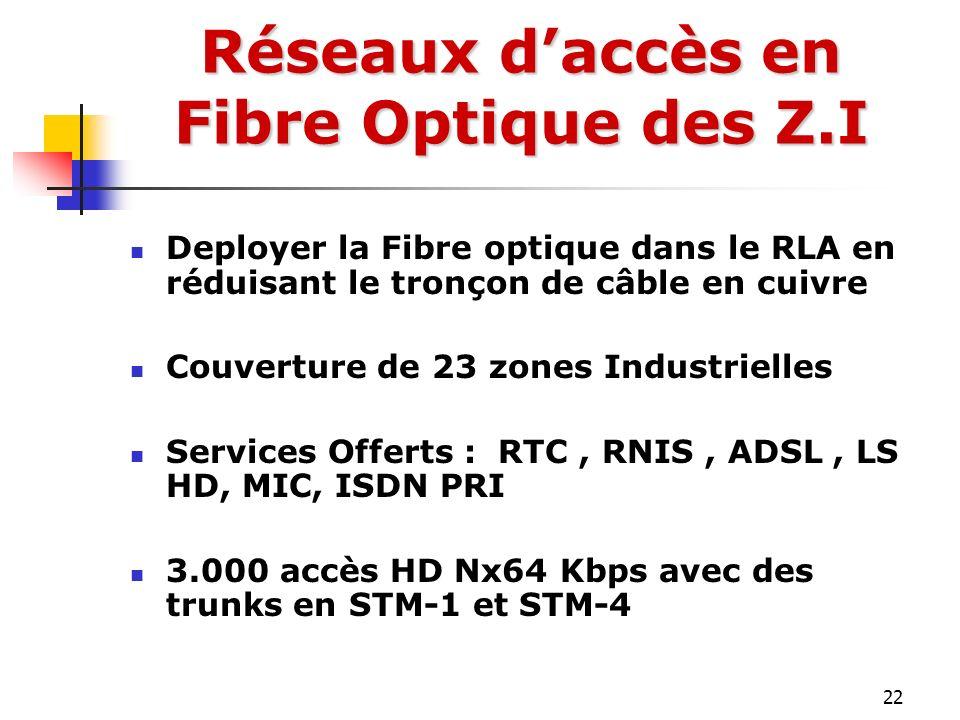 Réseaux d'accès en Fibre Optique des Z.I