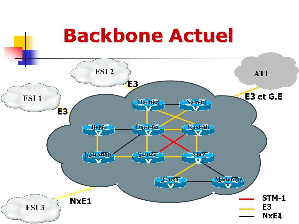 Backbone Actuel FSI 2 ATI E3 E3 et G.E FSI 1 E3 NxE1 FSI 3 STM-1 E3