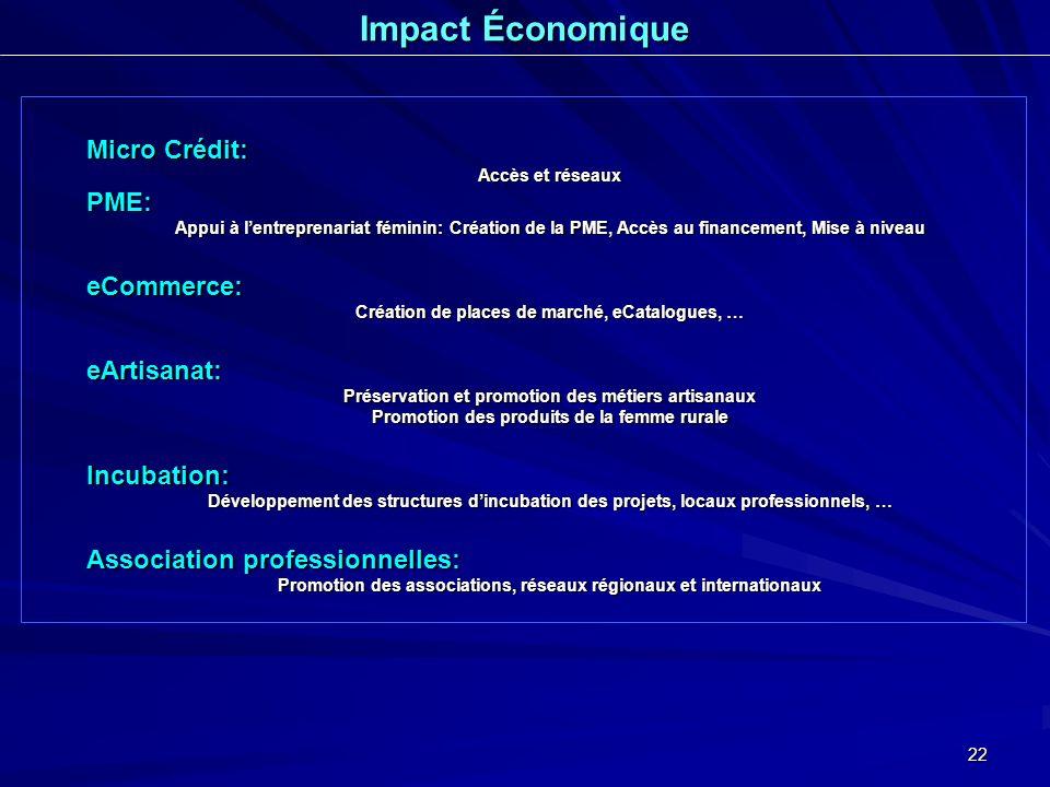 Impact Économique Micro Crédit: PME: eCommerce: eArtisanat: