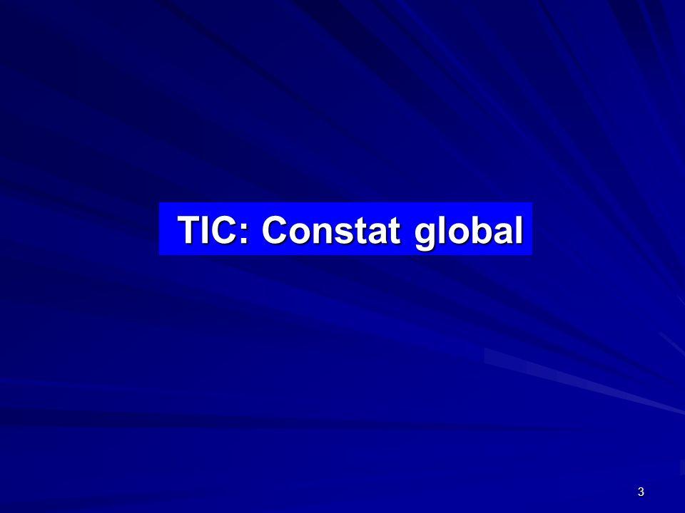 TIC: Constat global