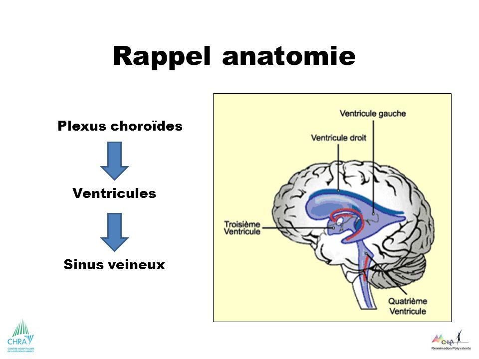 Rappel anatomie Plexus choroïdes Ventricules Sinus veineux