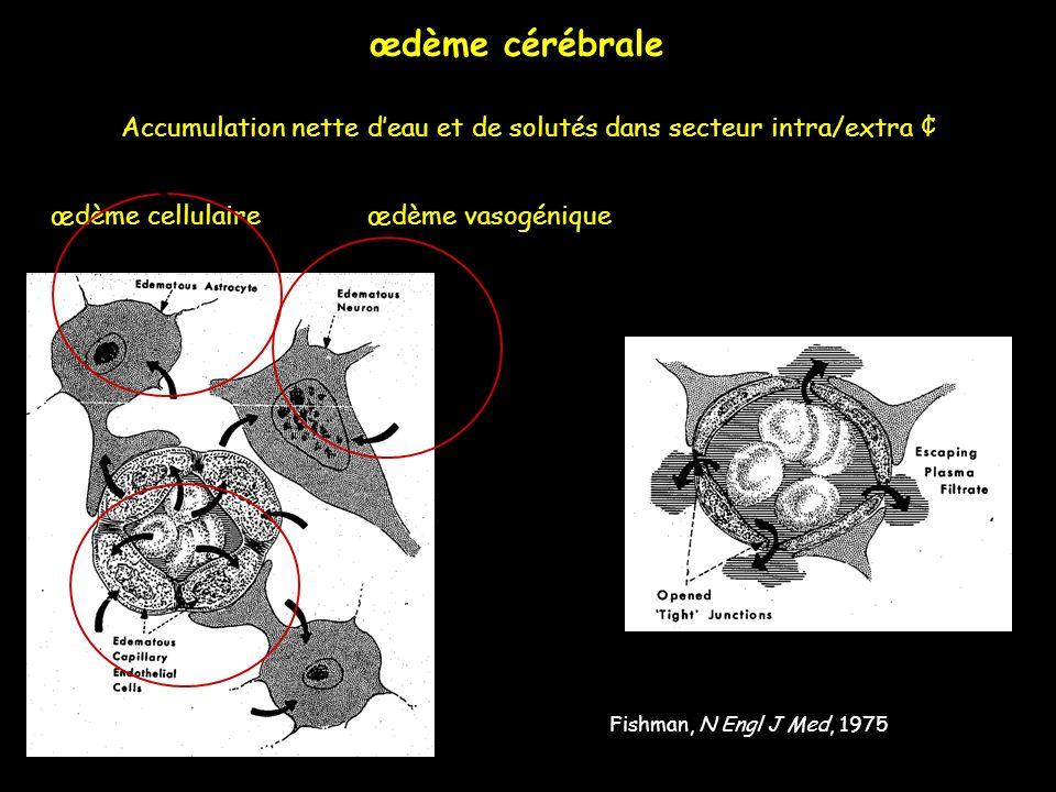 œdème cérébrale Accumulation nette d'eau et de solutés dans secteur intra/extra ¢ œdème cellulaire œdème vasogénique.