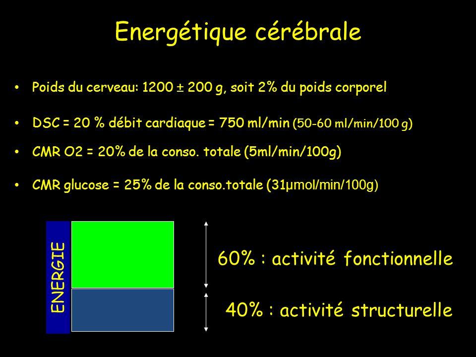 Energétique cérébrale