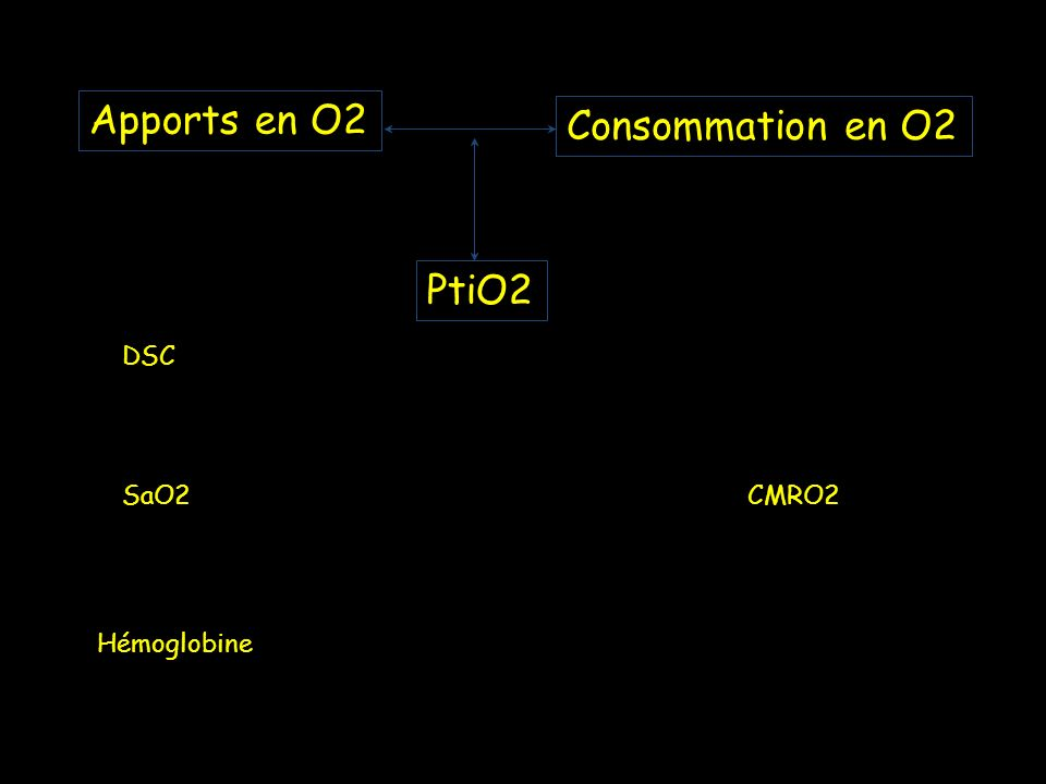 Apports en O2 Consommation en O2 PtiO2 DSC SaO2 CMRO2 Hémoglobine