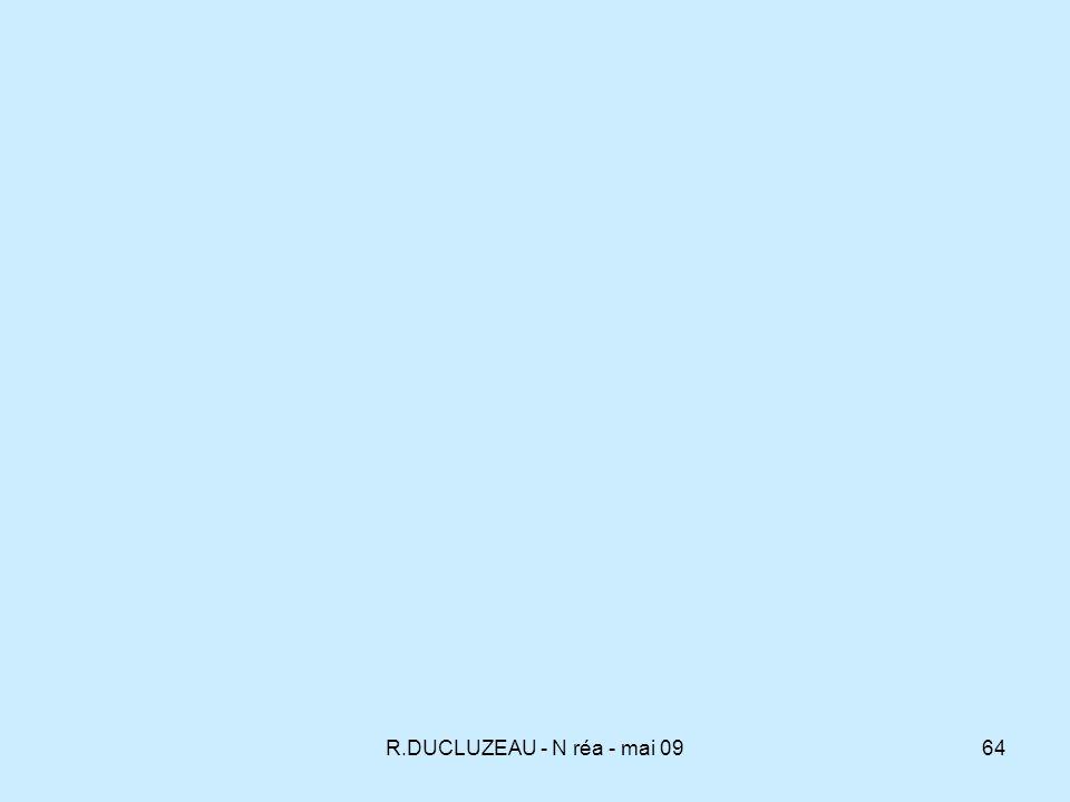 R.DUCLUZEAU - N réa - mai 09