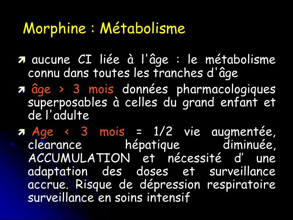 Morphine : Métabolisme