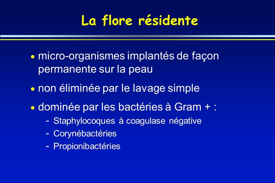 La flore résidente micro-organismes implantés de façon permanente sur la peau. non éliminée par le lavage simple.
