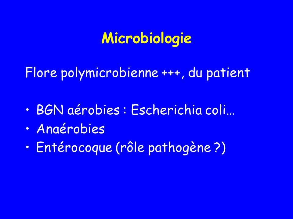 Microbiologie Flore polymicrobienne +++, du patient