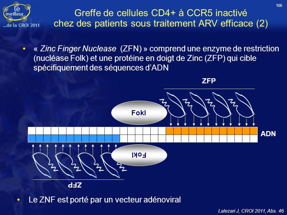 106 Greffe de cellules CD4+ à CCR5 inactivé chez des patients sous traitement ARV efficace (2)